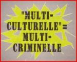Multiculturel.JPG
